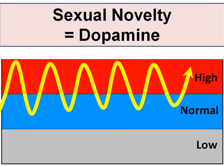 3. Porn dopamine