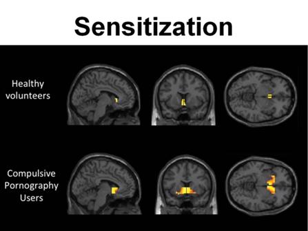 7. Sensitivisation
